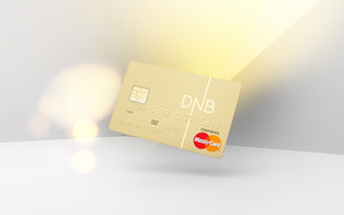 DNB Credit Card Visualisation. Agency ANTI